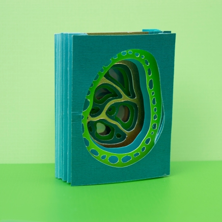 Plant Cell Tunnel Book