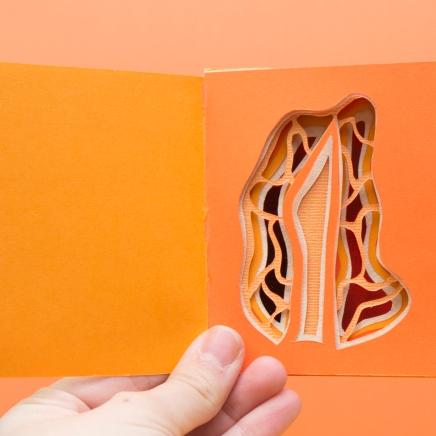 Orange Surprise Book