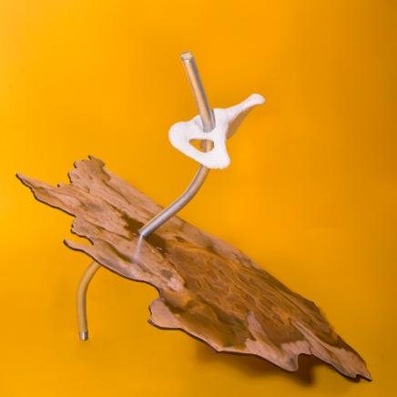 Hip Sculpture