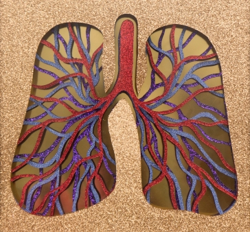 lungs close up